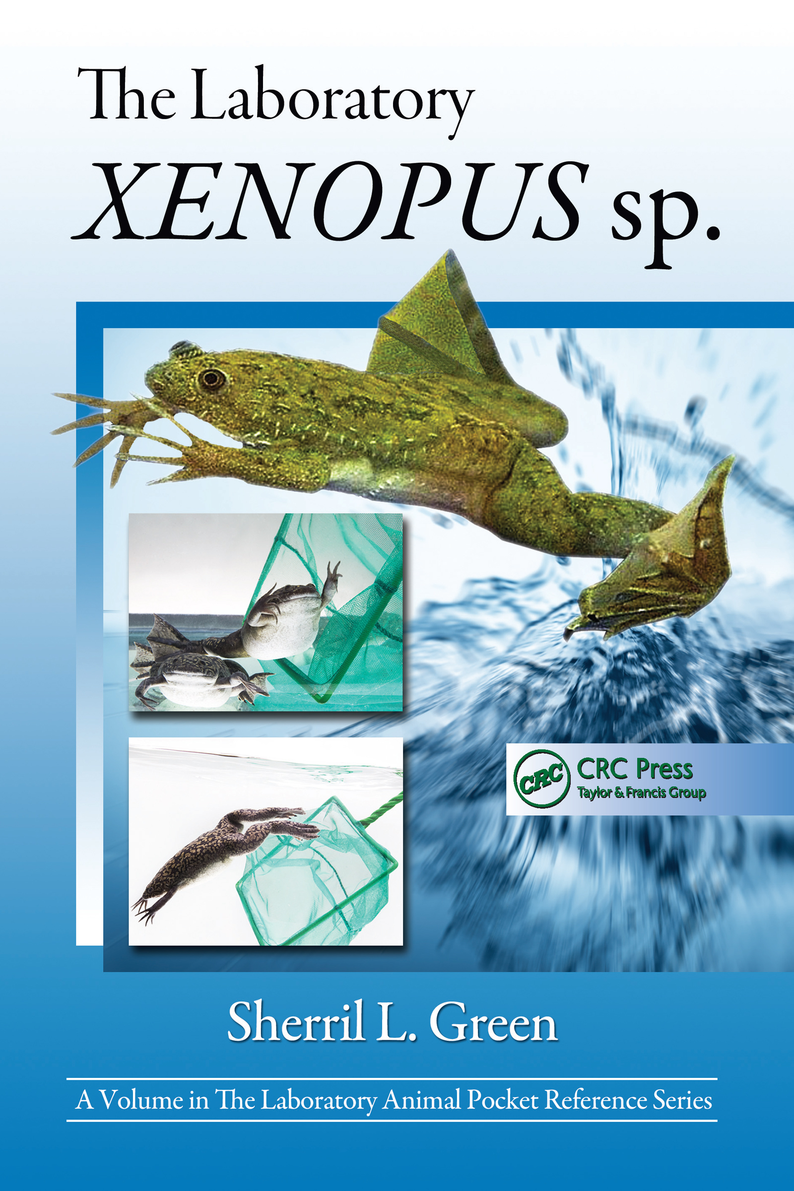 The Laboratory Xenopus sp.: 1st Edition (Paperback) book cover