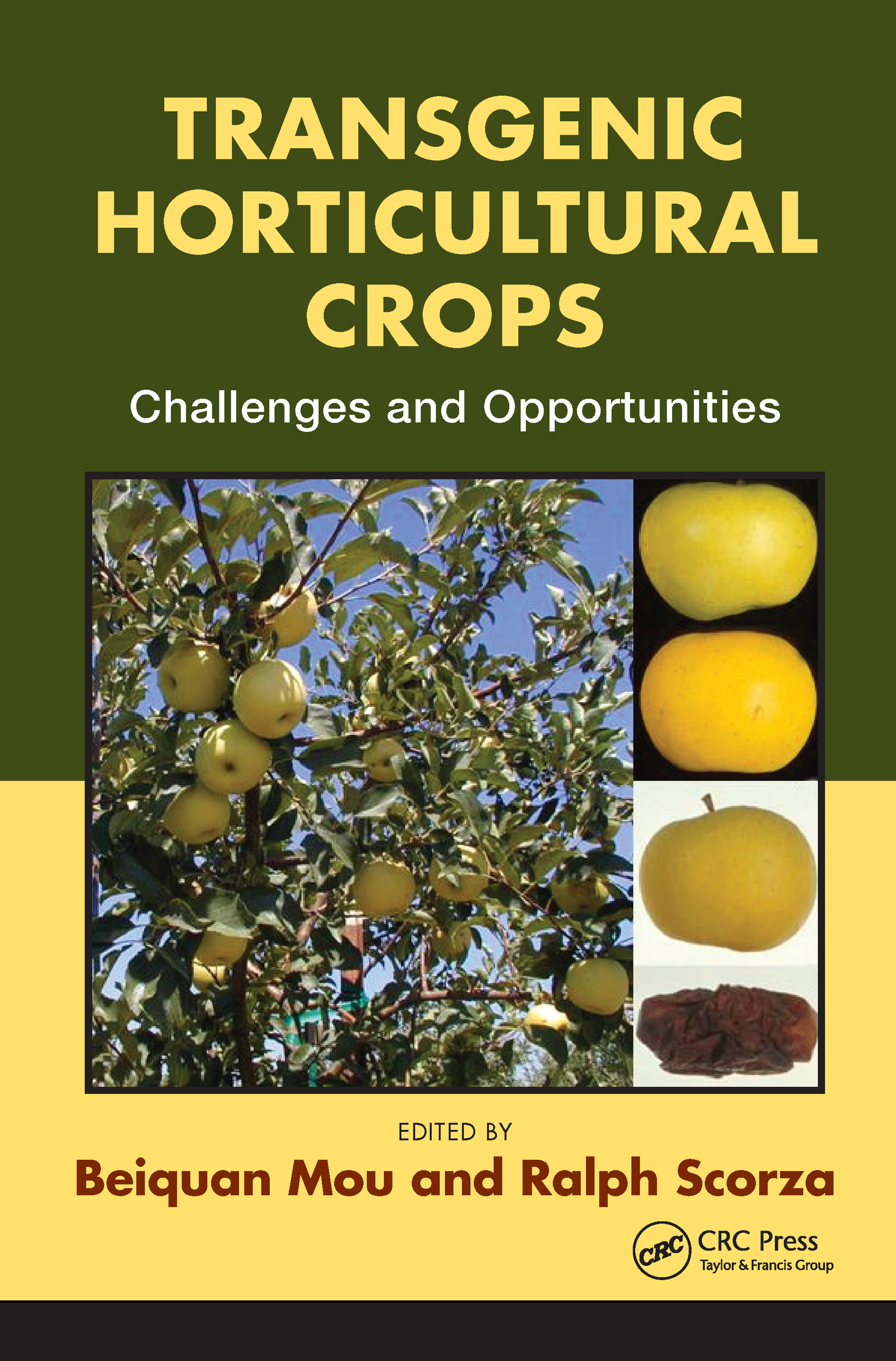 Transgenic Horticultural Crops: Challenges and Opportunities, 1st Edition (Hardback) book cover