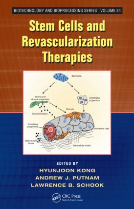 Stem Cells and Revascularization Therapies (Hardback) book cover