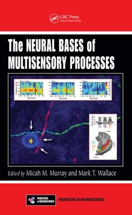 The Neural Bases of Multisensory Processes (Hardback) book cover
