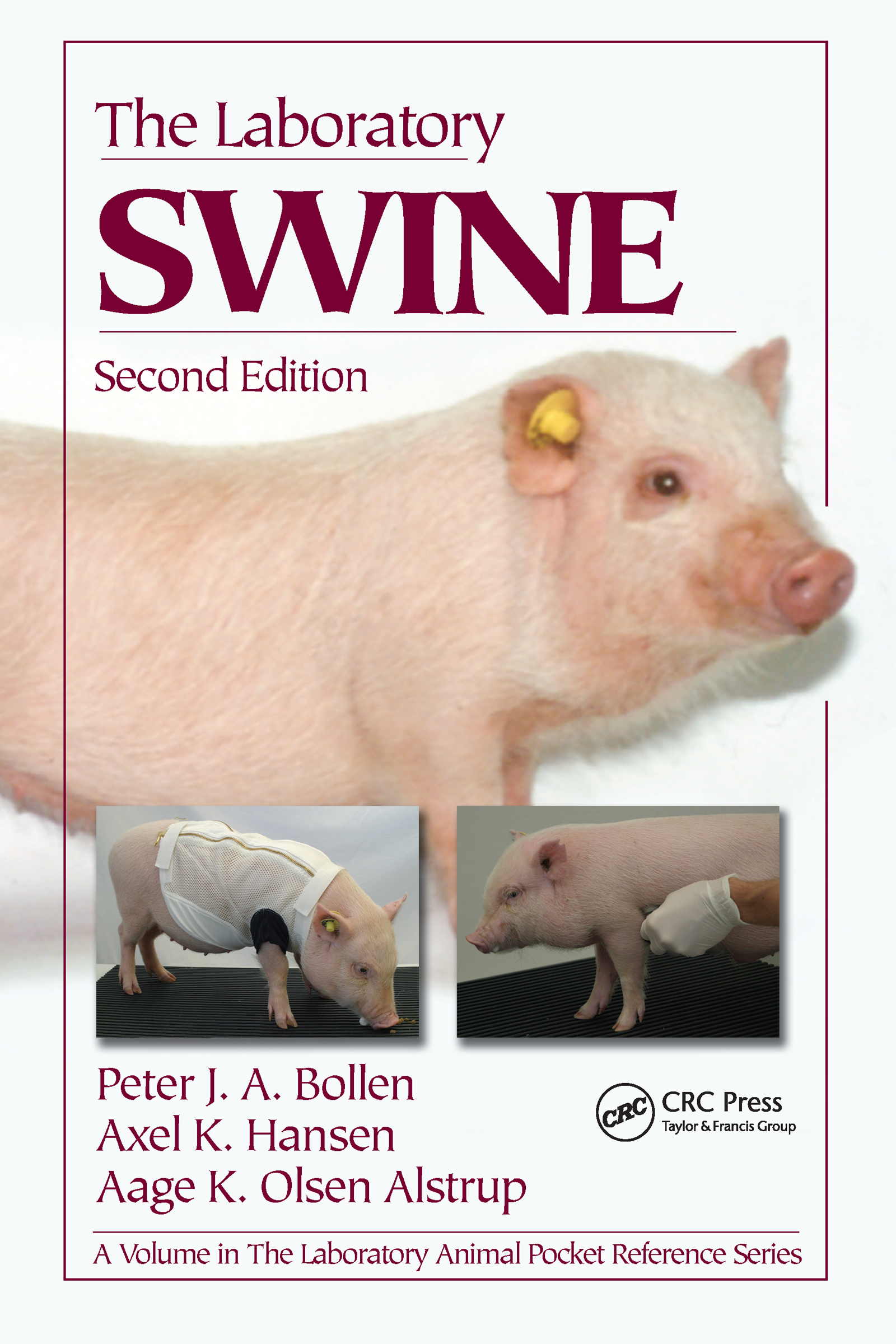 The Laboratory Swine: 2nd Edition (Paperback) book cover