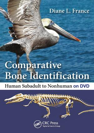 Comparative Bone Identification: Human Subadult to Nonhuman on DVD book cover