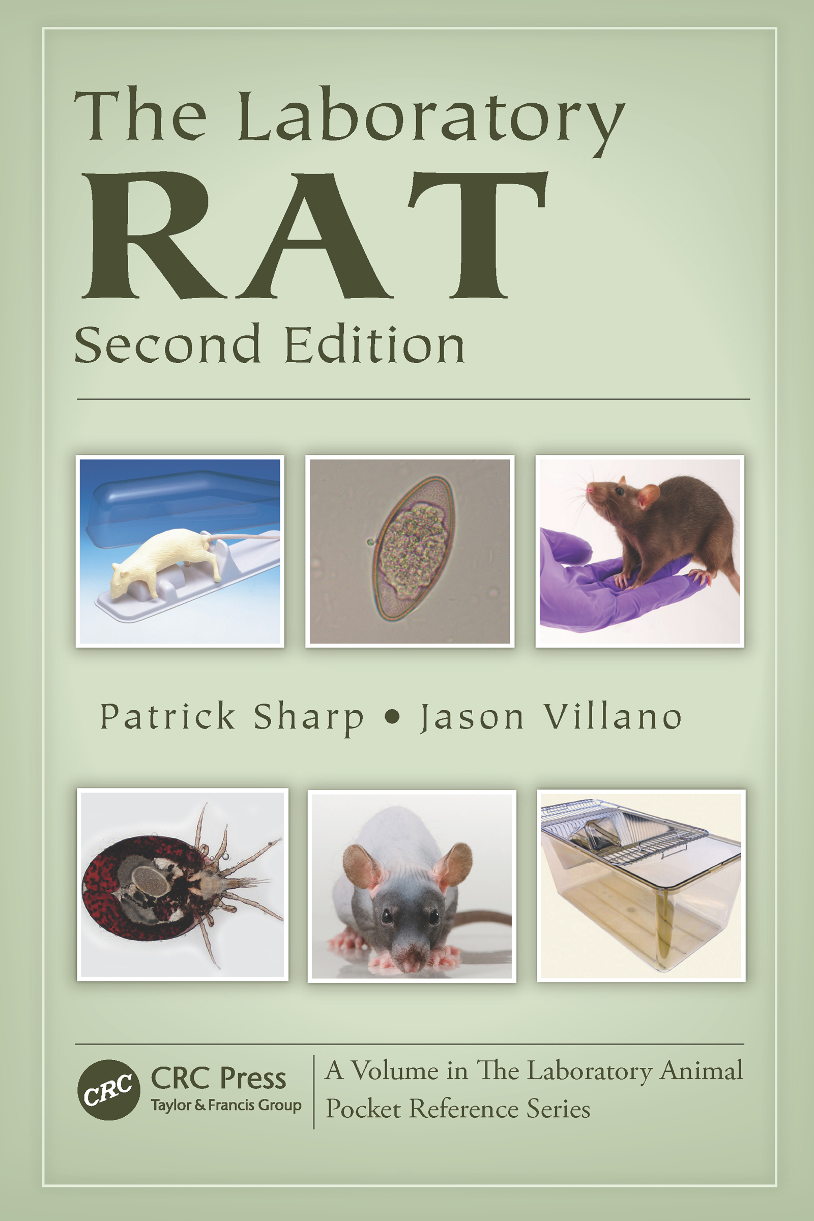 The Laboratory Rat, Second Edition: 2nd Edition (Paperback) book cover