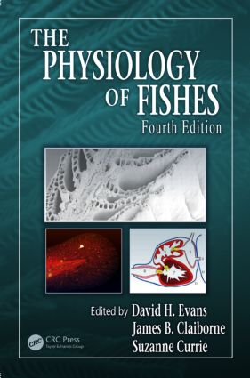 The Physiology of Fishes, Fourth Edition: 4th Edition (Hardback) book cover