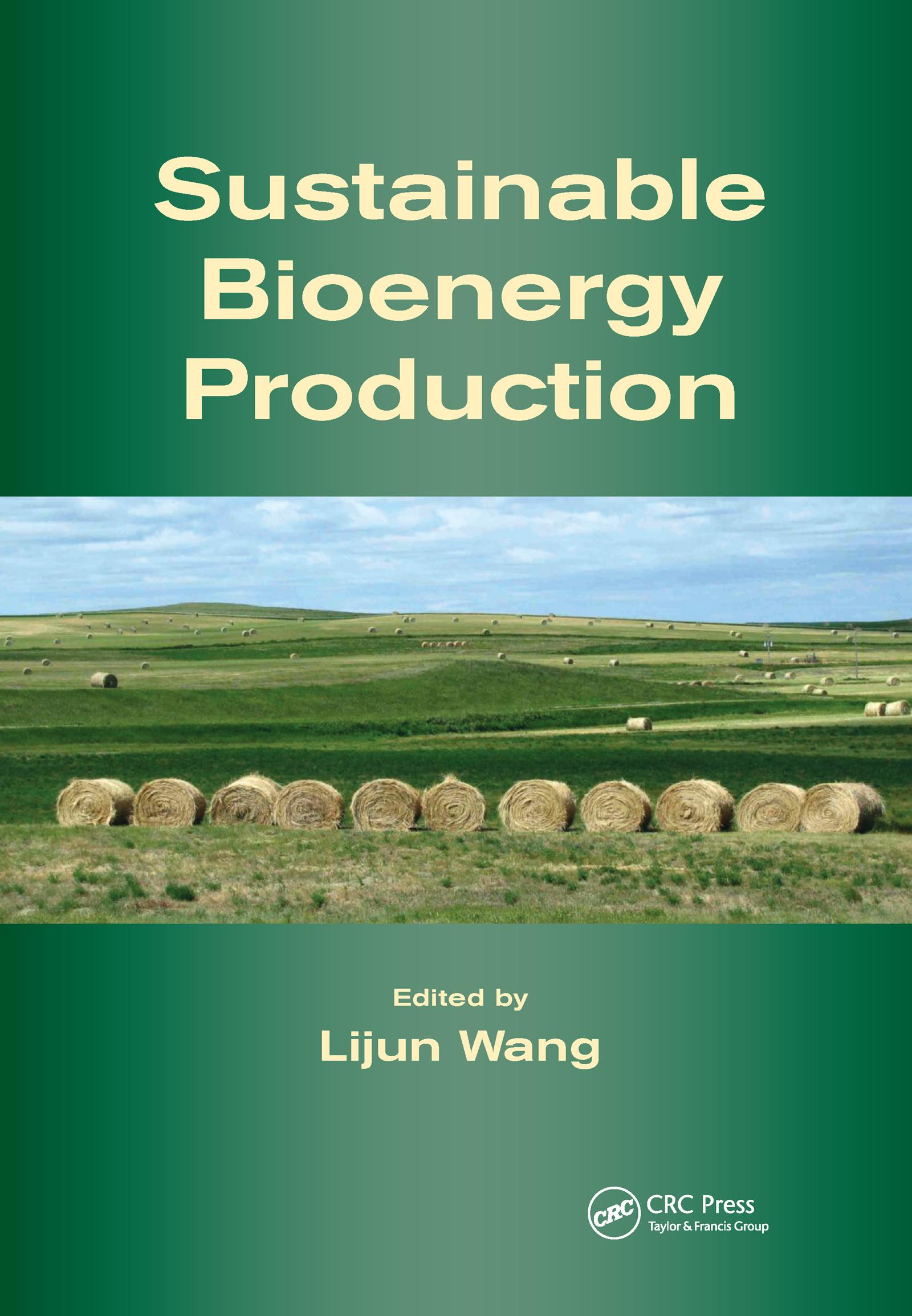 Sustainable Bioenergy Production: 1st Edition (Hardback) book cover