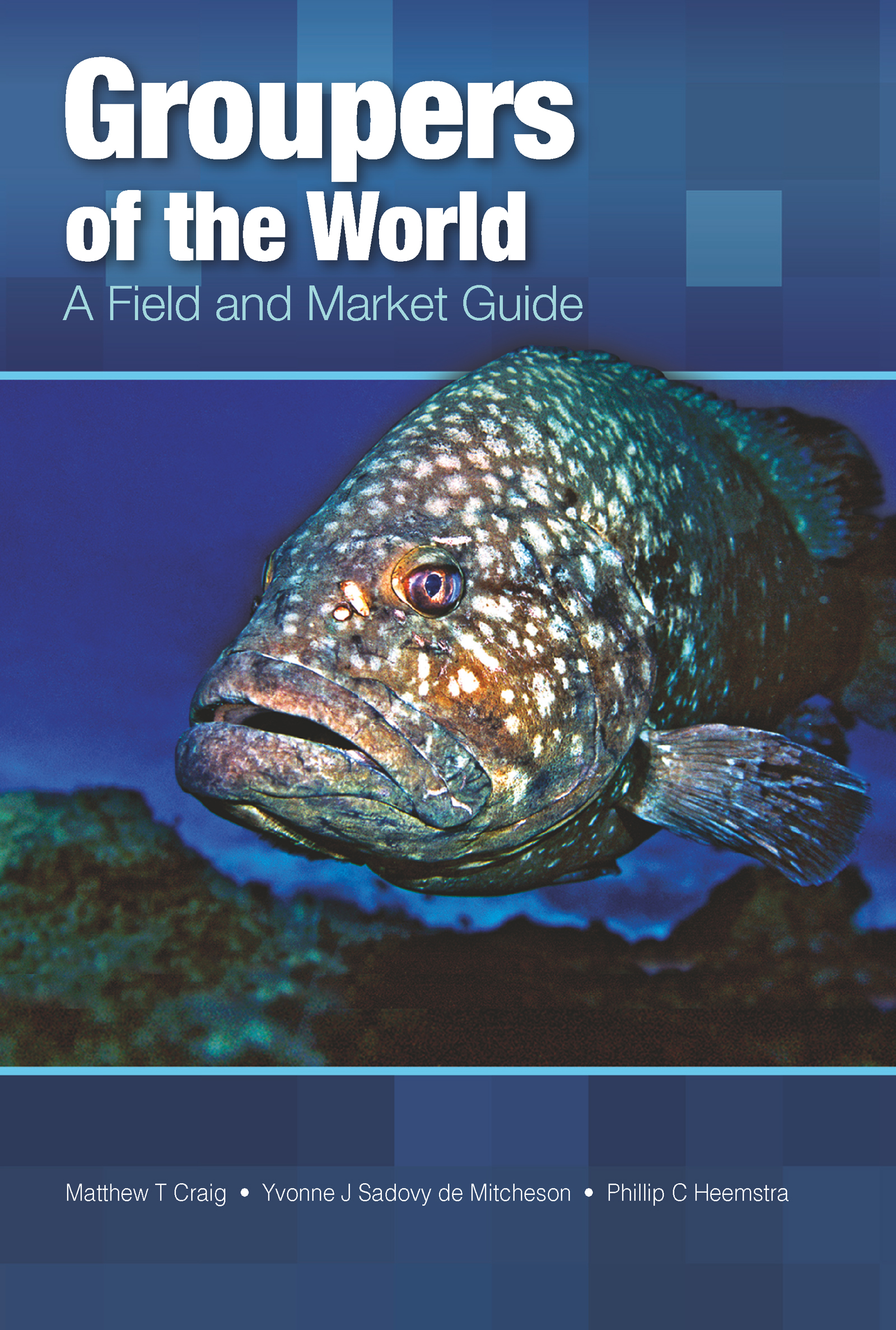 Groupers of the World: A Field and Market Guide (Hardback) book cover