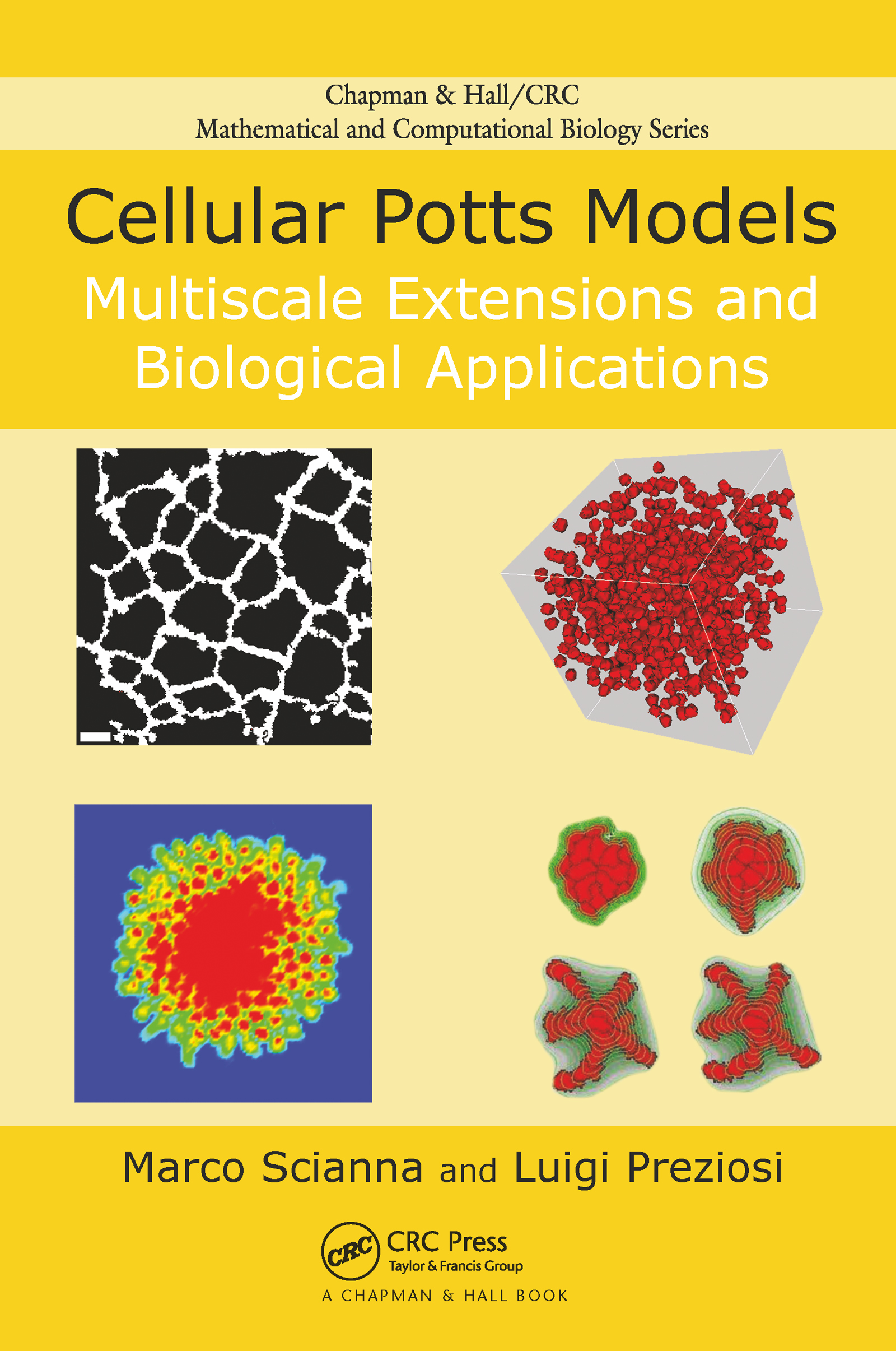 Cellular Potts Models: Multiscale Extensions and Biological Applications, 1st Edition (Hardback) book cover