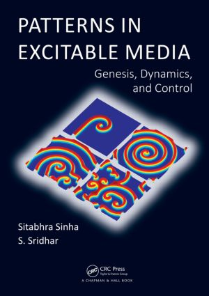 Patterns in Excitable Media: Genesis, Dynamics, and Control, 1st Edition (Hardback) book cover