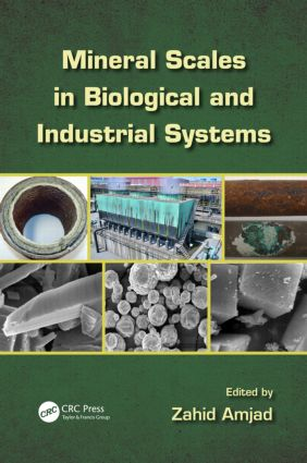 Mineral Scales in Biological and Industrial Systems: 1st Edition (Hardback) book cover