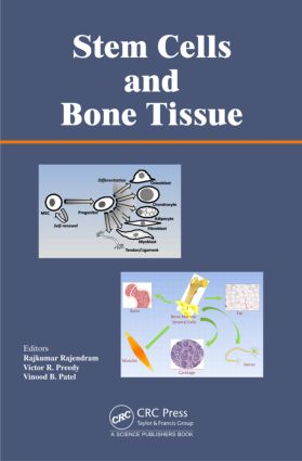 Stem Cells and Bone Tissue: 1st Edition (Paperback) book cover