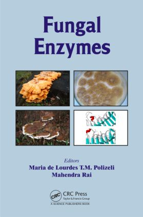 Fungal Enzymes: 1st Edition (Hardback) book cover