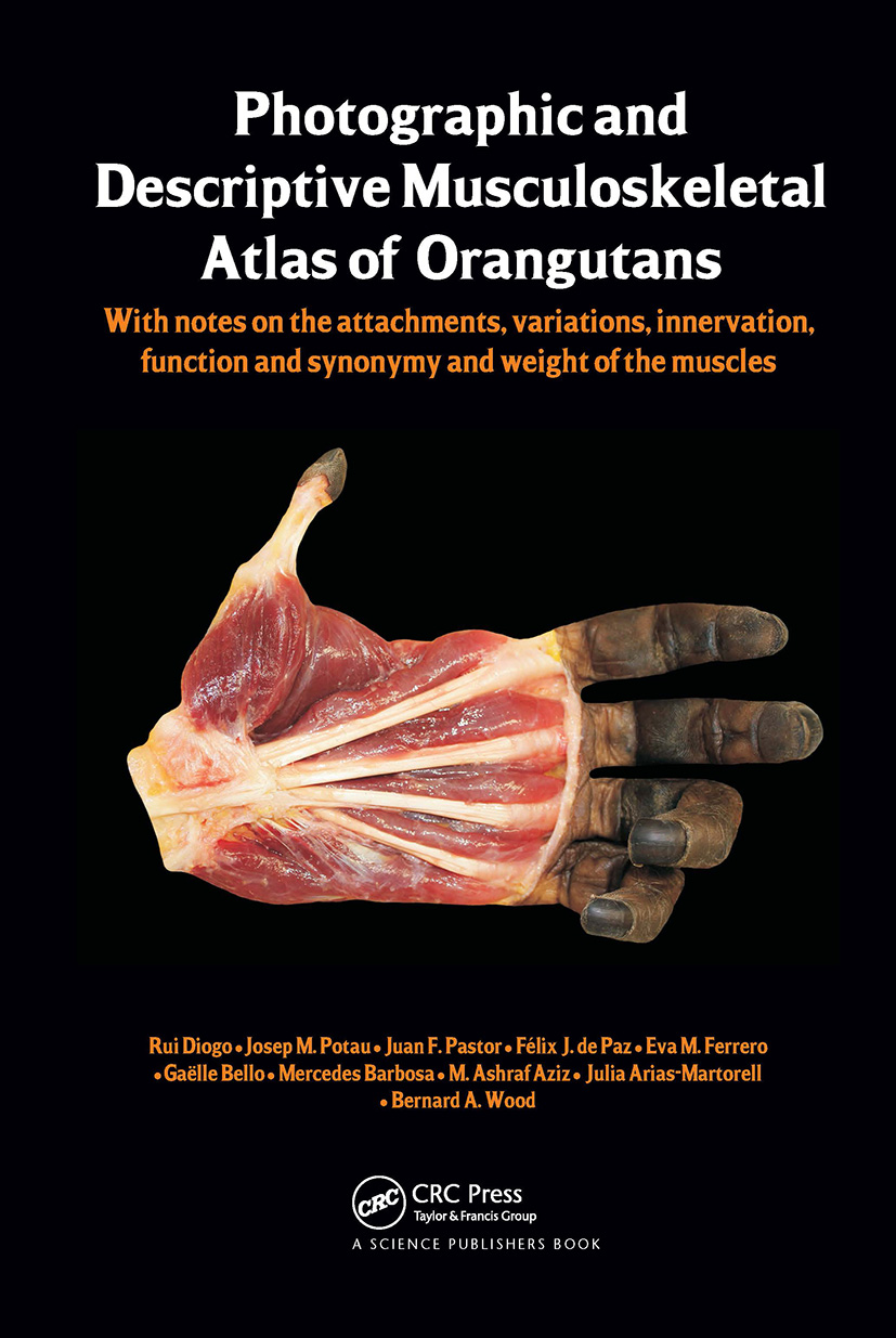Photographic and Descriptive Musculoskeletal Atlas of Orangutans: with notes on the attachments, variations, innervations, function and synonymy and weight of the muscles, 1st Edition (Hardback) book cover
