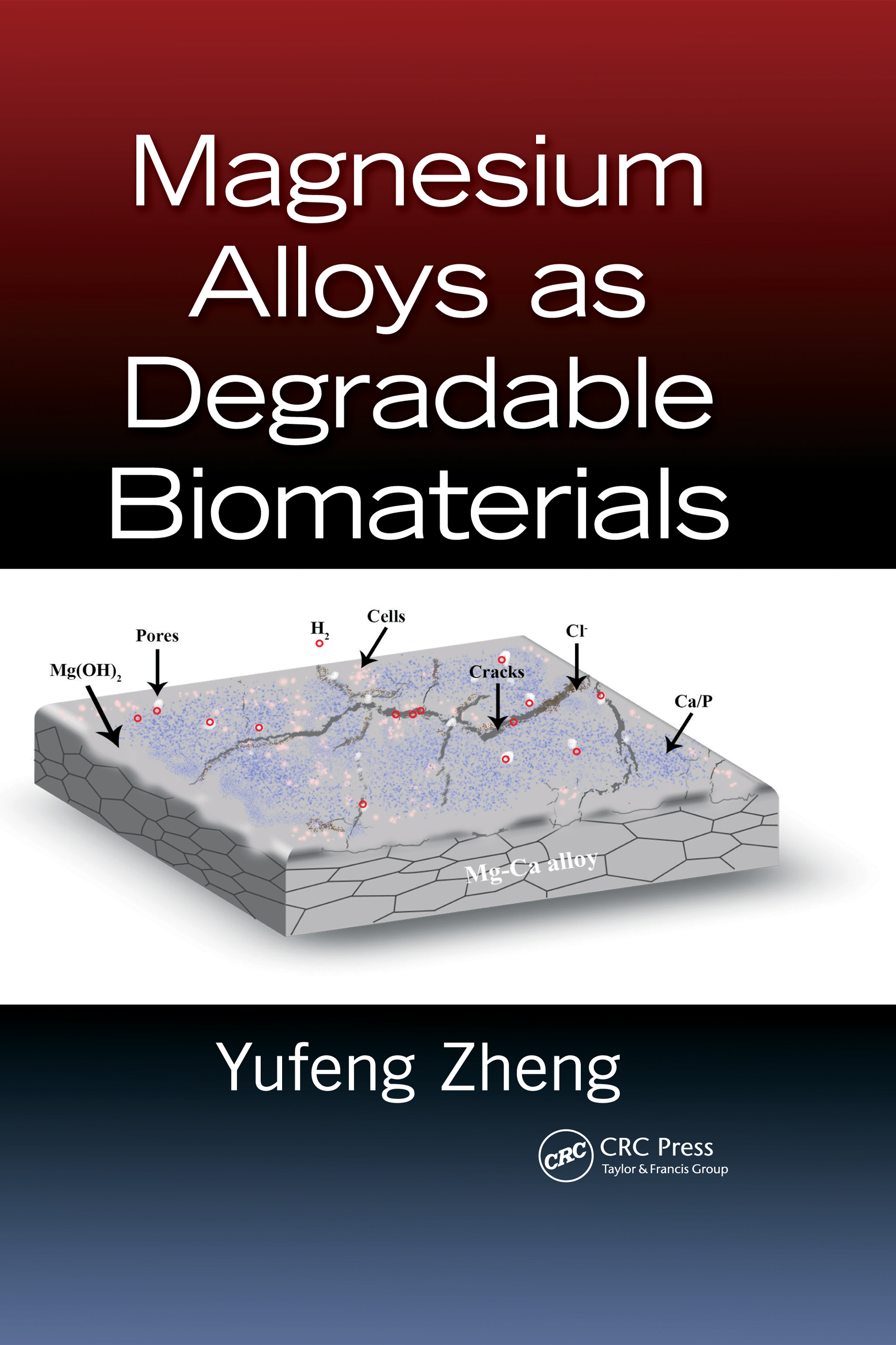 Magnesium Alloys as Degradable Biomaterials: 1st Edition (Hardback) book cover