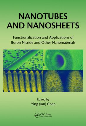 Nanotubes and Nanosheets: Functionalization and Applications of Boron Nitride and Other Nanomaterials, 1st Edition (Hardback) book cover