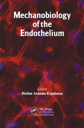 Mechanobiology of the Endothelium: 1st Edition (Hardback) book cover