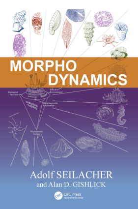 Morphodynamics: 1st Edition (Hardback) book cover