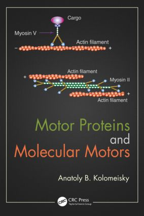 Motor Proteins and Molecular Motors: 1st Edition (Hardback) book cover