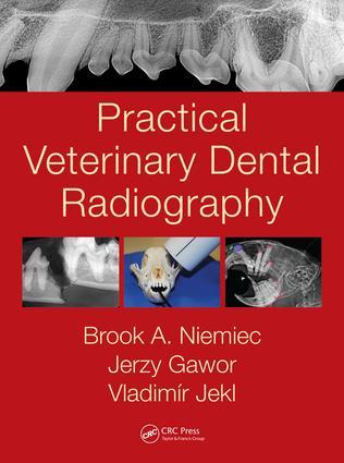 Marketing Dental Radiography