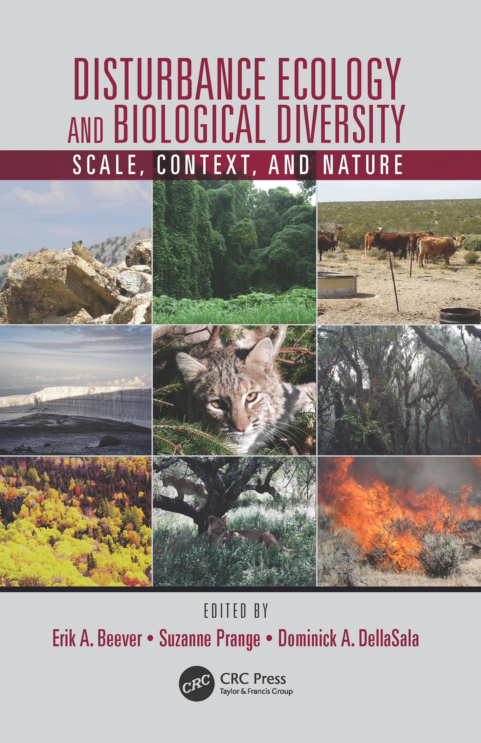 Disturbance Ecology and Biological Diversity