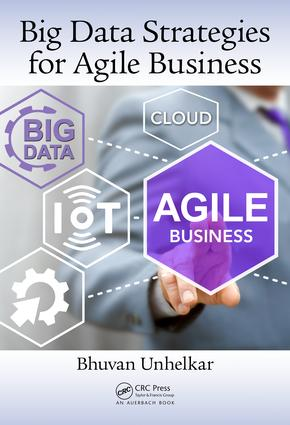 Big Data Strategies for Agile Business (Hardback) book cover