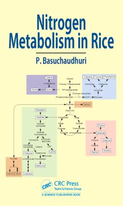 Nitrogen Metabolism in Rice: 1st Edition (Hardback) book cover