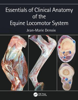 Essentials of Clinical Anatomy of the Equine Locomotor System: 1st Edition (Hardback) book cover