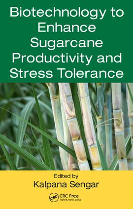 Biotechnology to Enhance Sugarcane Productivity and Stress Tolerance: 1st Edition (Hardback) book cover