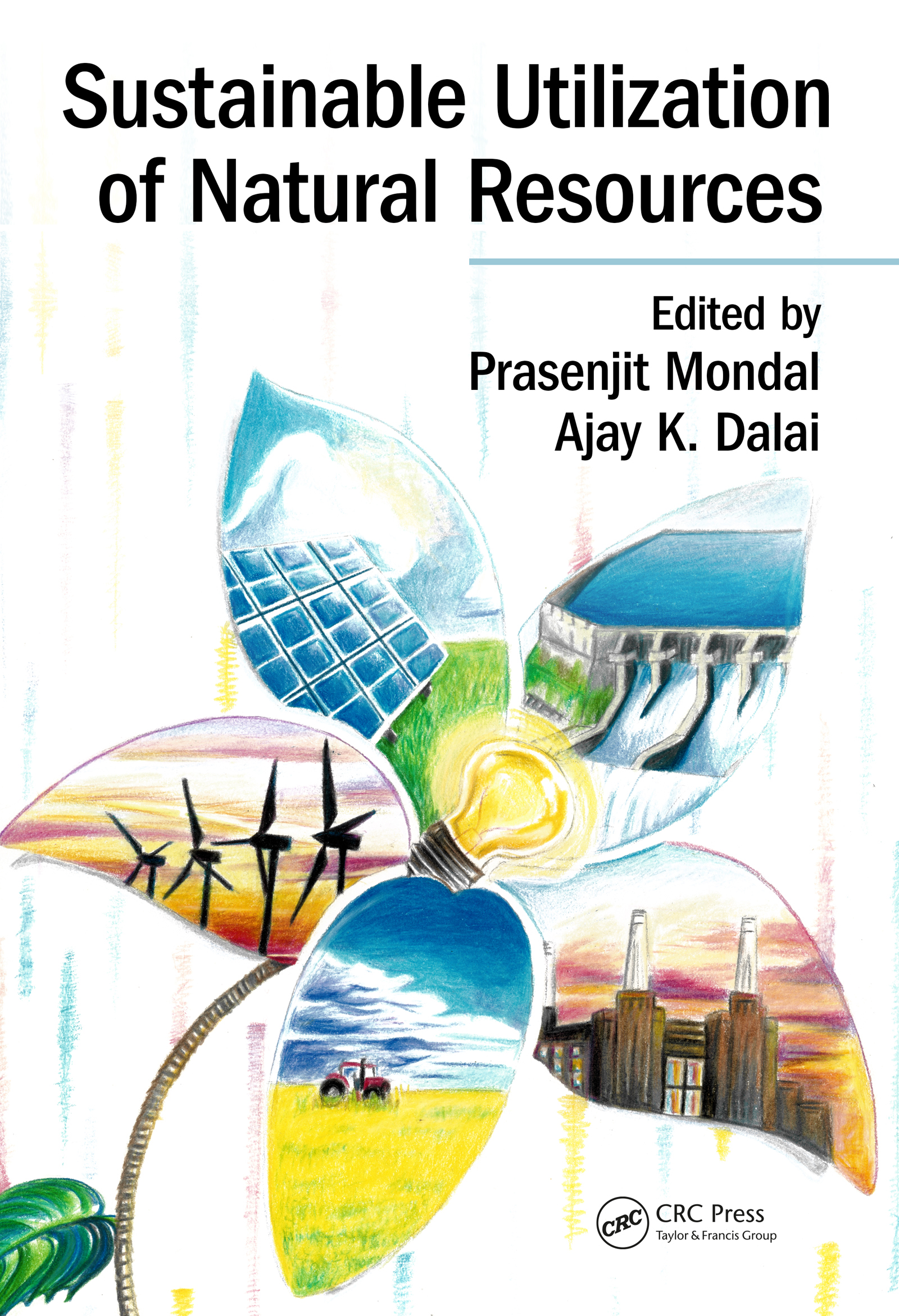 Sustainable Utilization of Natural Resources (Hardback) book cover