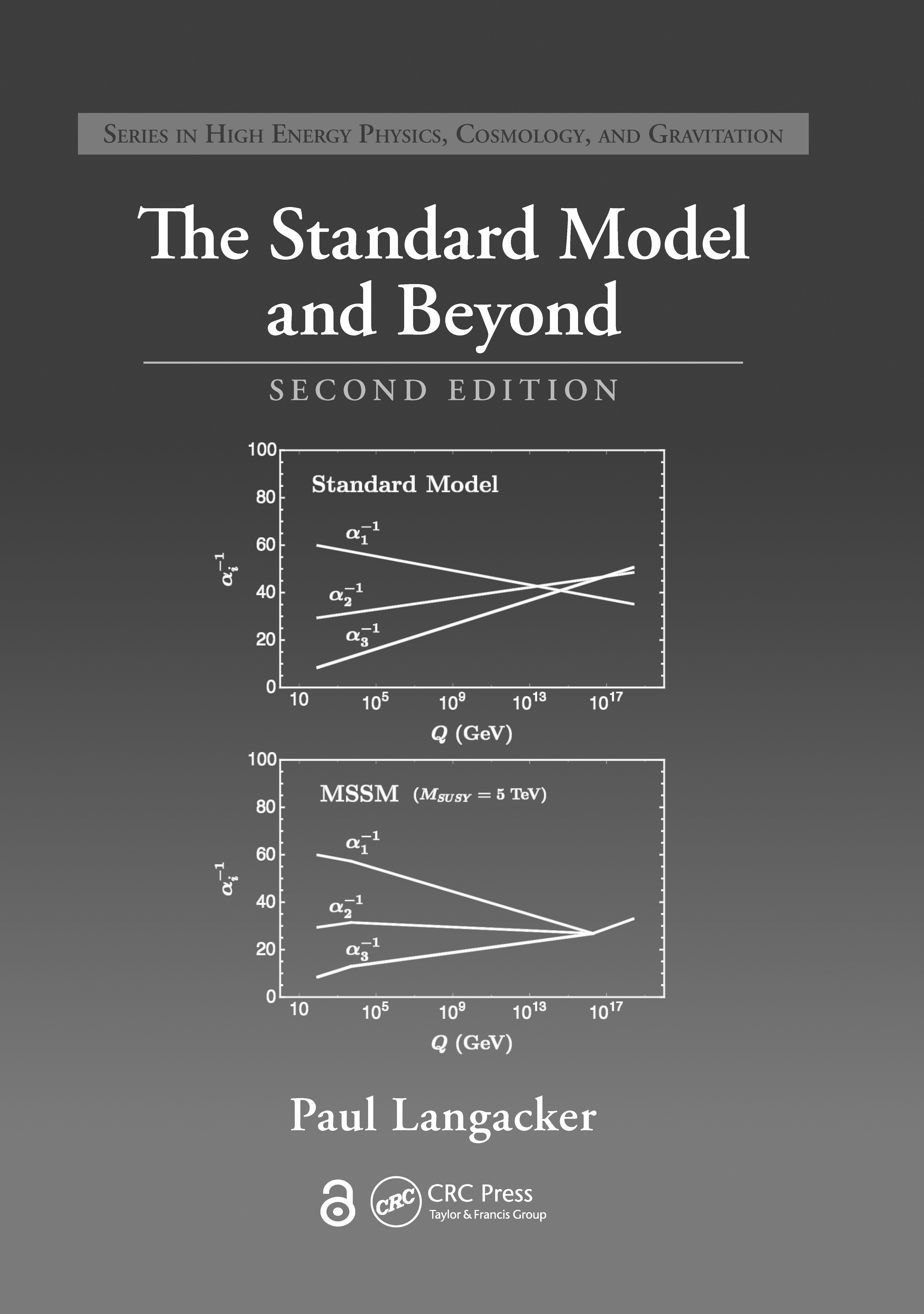 The Standard Model and Beyond: 2nd Edition (Hardback) book cover