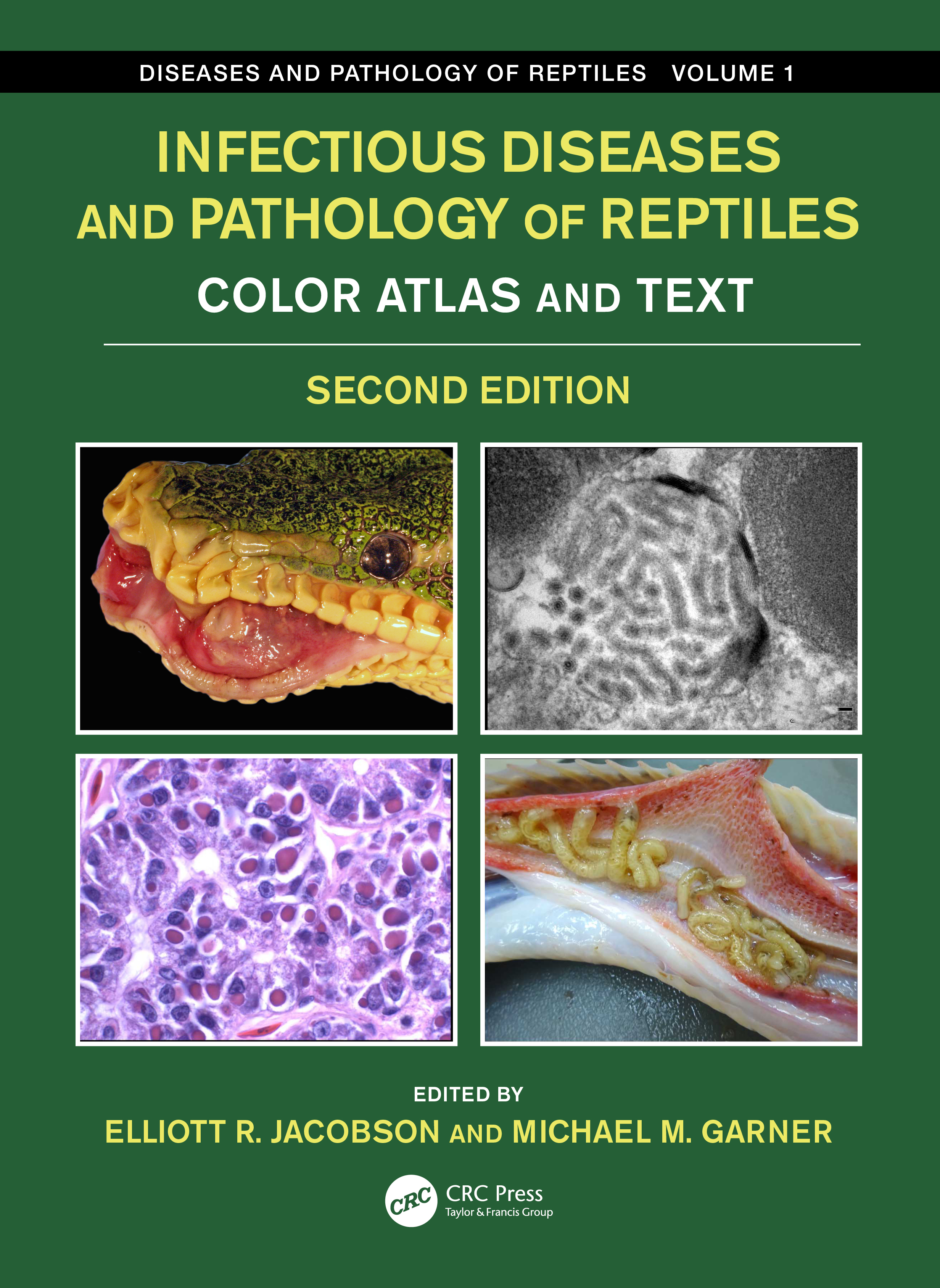 Infectious Diseases and Pathology of Reptiles: Color Atlas and Text, Diseases and Pathology of Reptiles Volume 1 book cover