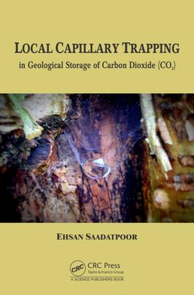 Local Capillary Trapping in Geological Storage of Carbon Dioxide (CO2) book cover
