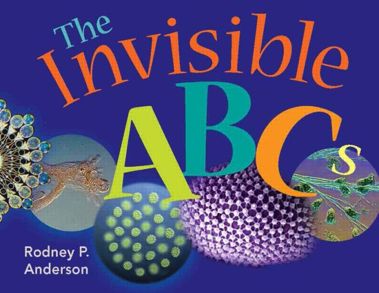 The Invisible ABCs: 1st Edition (Hardback) book cover