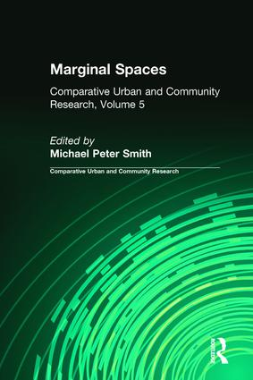 Marginal Spaces: Ser Volume 5, 1st Edition (Paperback) book cover
