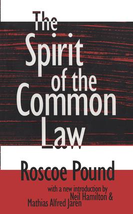 The Spirit of the Common Law: 1st Edition (Paperback) book cover