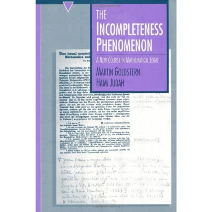 The Incompleteness Phenomenon: 1st Edition (Paperback) book cover