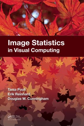 Image Statistics in Visual Computing: 1st Edition (Hardback) book cover