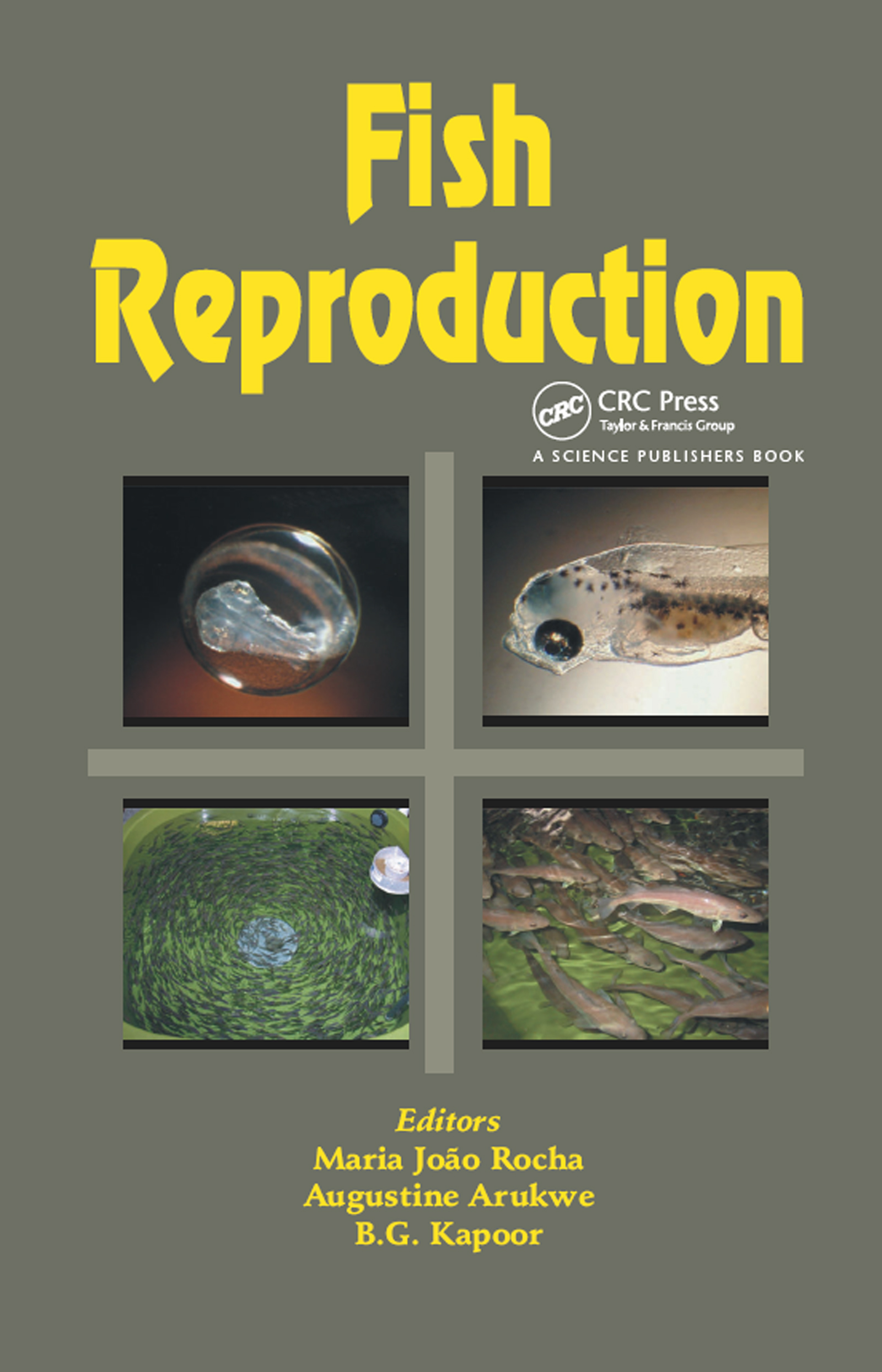 Fish Reproduction: 1st Edition (Hardback) book cover