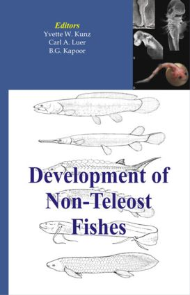 Development of Non-teleost Fishes: 1st Edition (Hardback) book cover