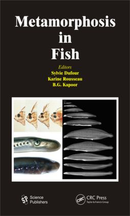 Metamorphosis in Fish: 1st Edition (Hardback) book cover