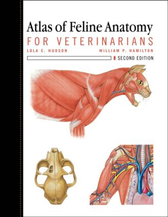 Atlas of Feline Anatomy For Veterinarians