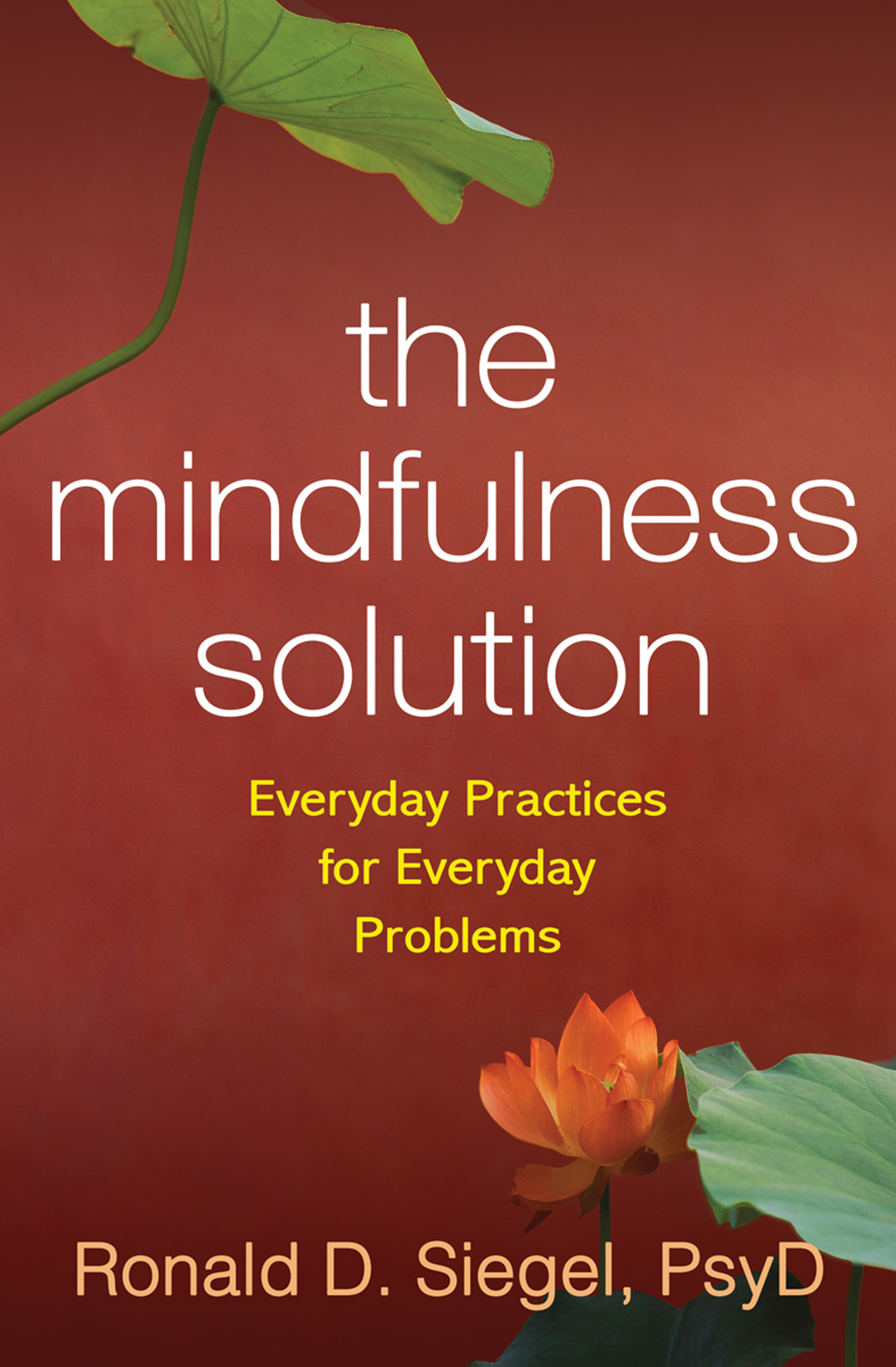 The Mindfulness Solution: Everyday Practices for Everyday Problems (Paperback) book cover