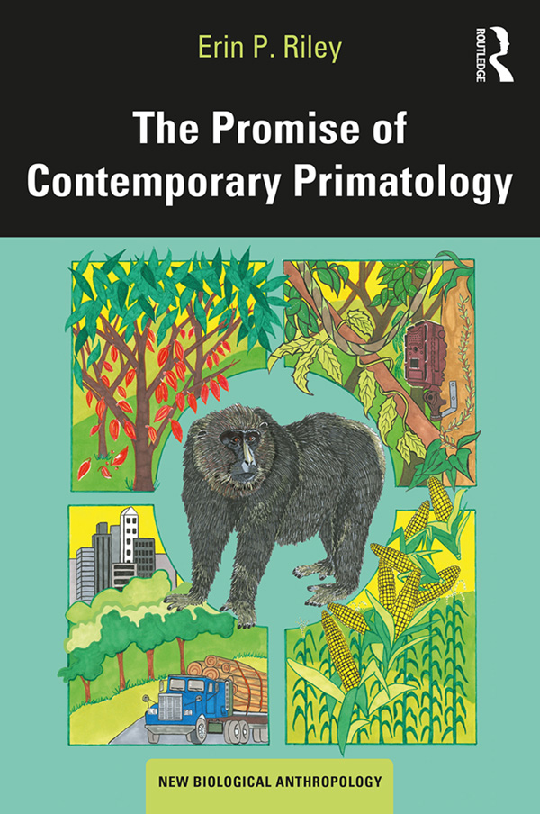 The Promise of Contemporary Primatology: 1st Edition (Hardback) book cover