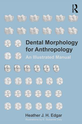 Dental Morphology for Anthropology: An Illustrated Manual, 1st Edition (Paperback) book cover