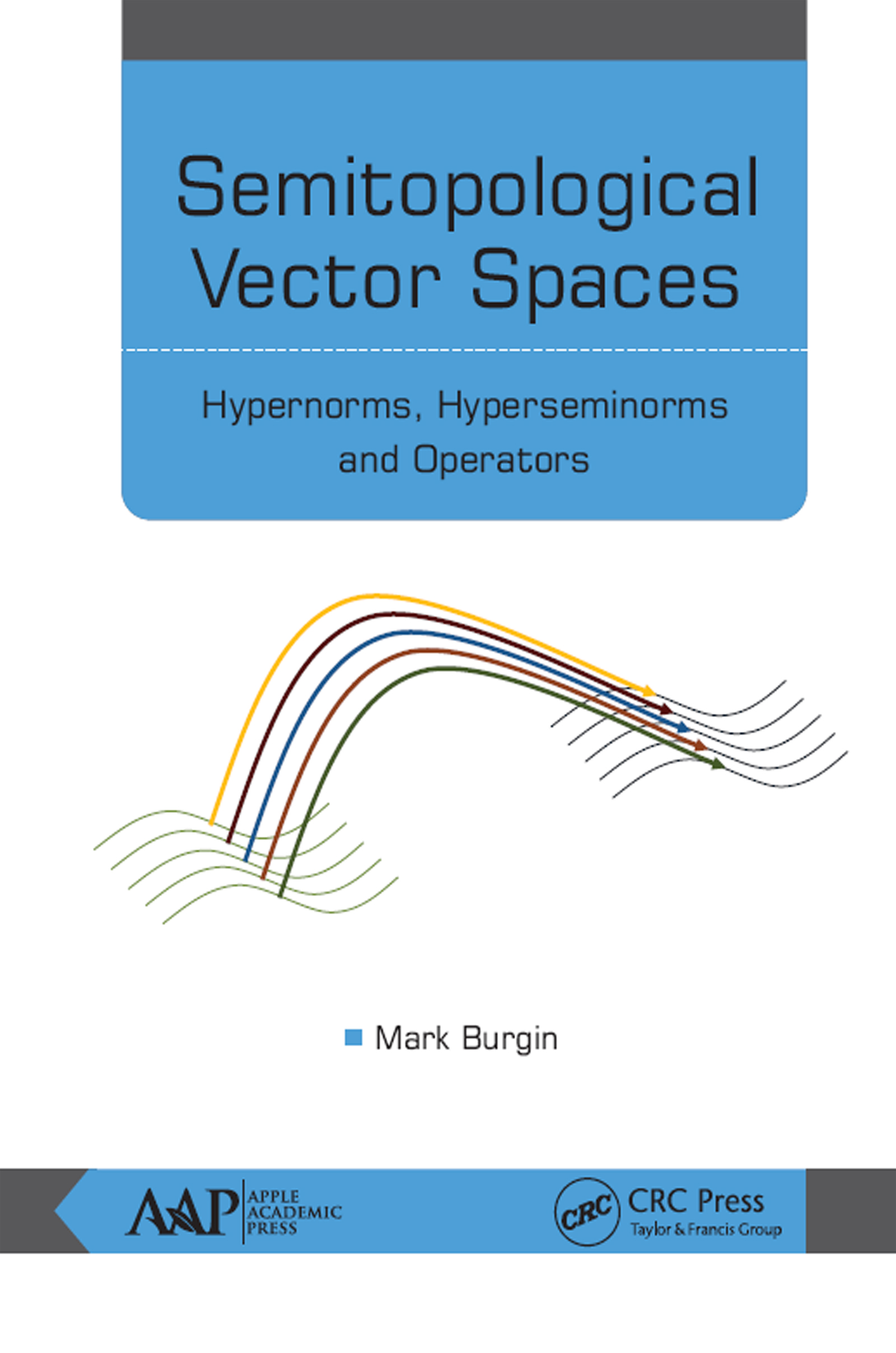 Semitopological Vector Spaces: Hypernorms, Hyperseminorms, and Operators, 1st Edition (Hardback) book cover