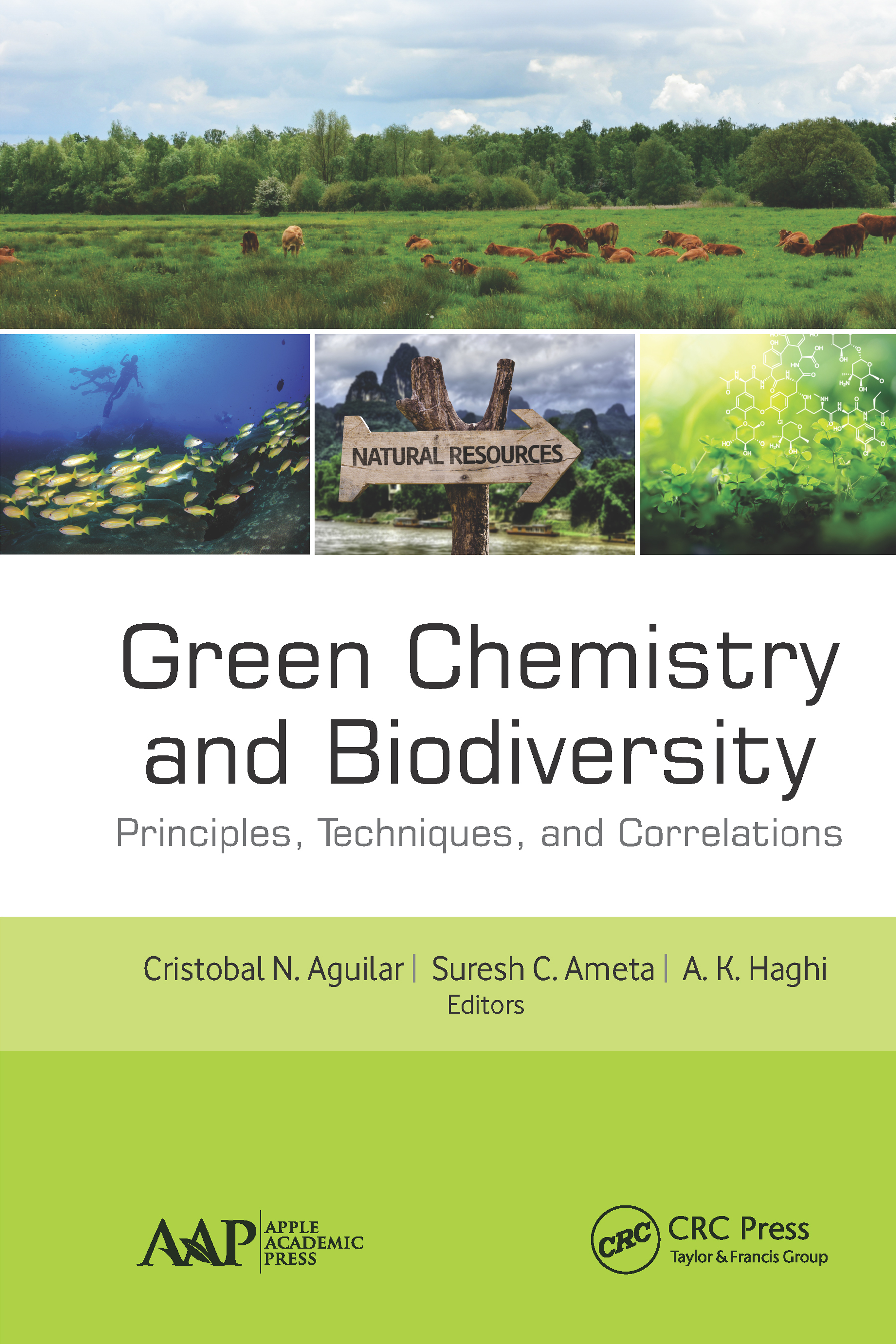 Green Chemistry and Biodiversity: Principles, Techniques, and Correlations book cover