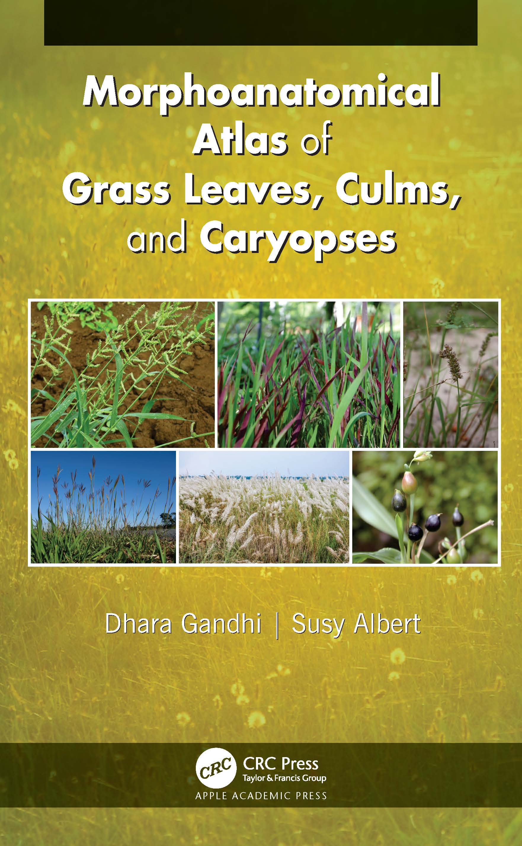 Morphoanatomical Atlas of Grass Leaves, Culms, and Caryopses book cover