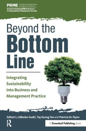 Beyond the Bottom Line: Integrating Sustainability into Business and Management Practice, 1st Edition (Hardback) book cover
