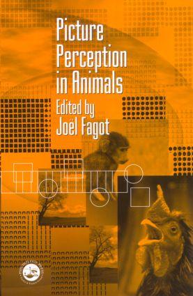 Picture Perception in Animals (Hardback) book cover