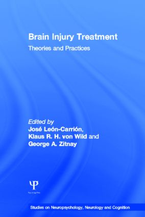 Brain Injury Treatment: Theories and Practices book cover