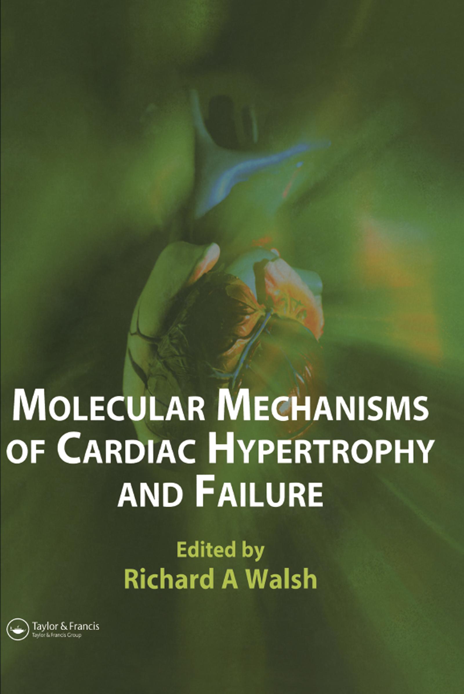 Molecular Mechanisms of Cardiac Hypertrophy and Failure: 1st Edition (Hardback) book cover